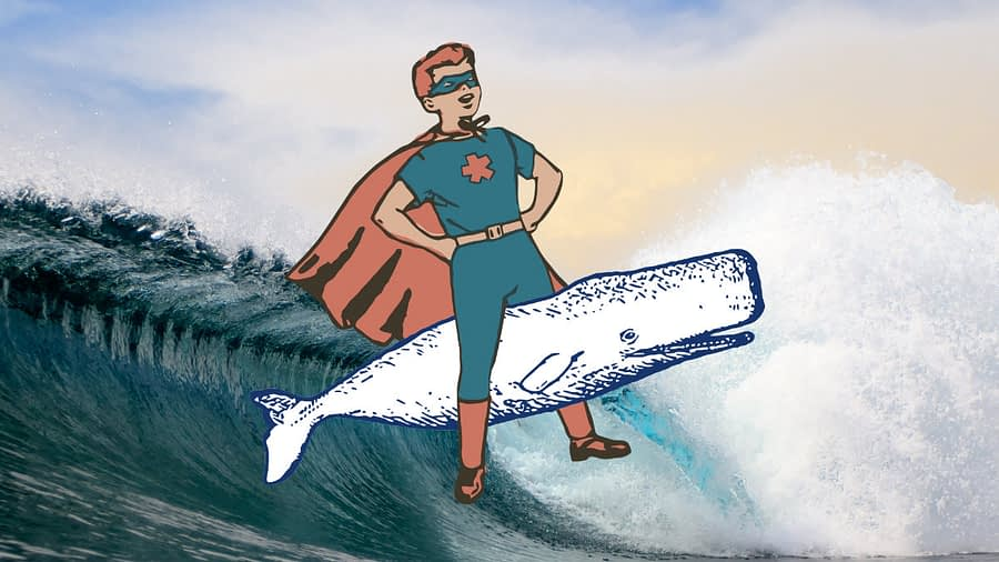 white whale neighborhood comics popup
